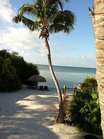 Little Conch Key: 2 bedroom 2 bath ocean view cottage