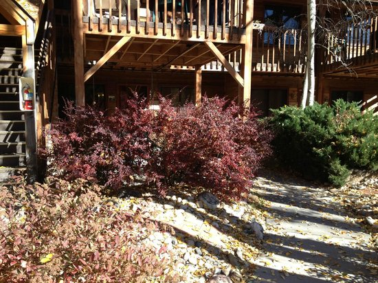 Streamside on Fall River: The cabin- on the porches they have grills set up for you
