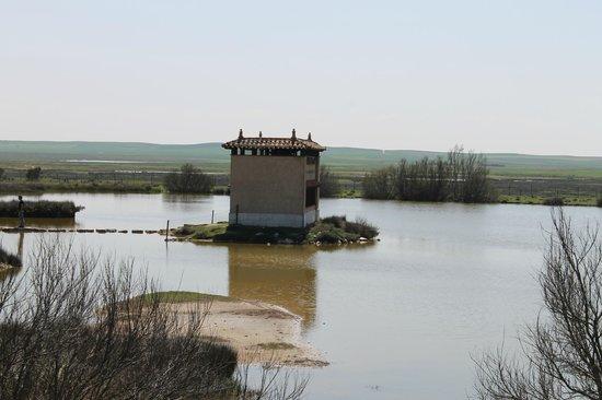 Reserva Natural de las Lagunas de Villafafila: Uno de los observatorios de aves.