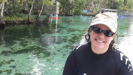 Fun 2 Dive : Jenn and some Manatees