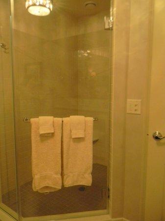 AmishView Inn & Suites: Shower big enough for 10 people!