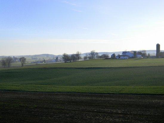 AmishView Inn & Suites: View
