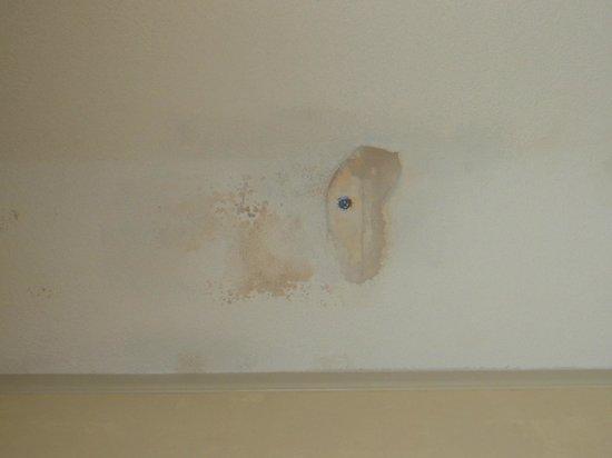 Hyatt Regency Coral Gables: dining room ceiling damaged by roof leak