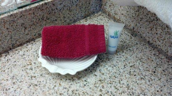 Whispering Hills Inn: counter near sink