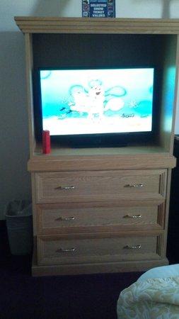 Whispering Hills Inn: flat screen television