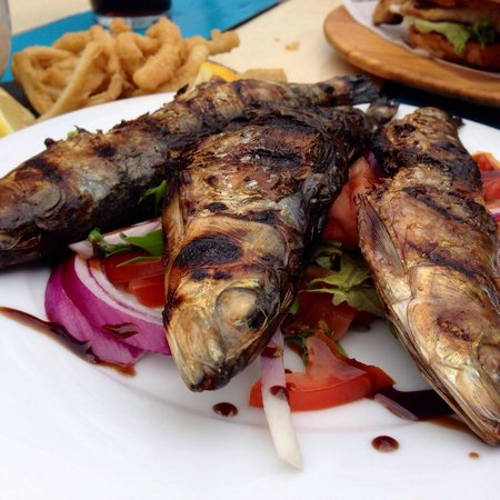 Boathouse: Cornish sardines with tomato salad - sardines could have been cleaned better.