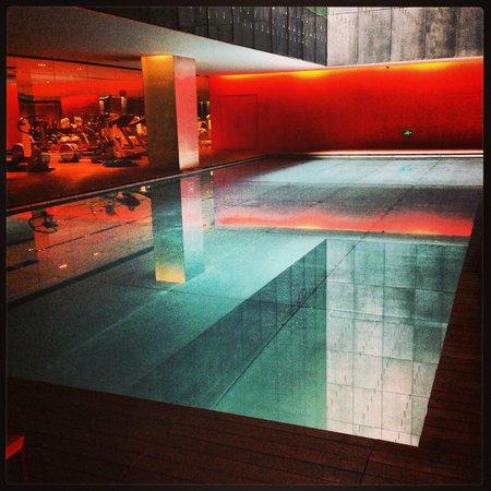 The Opposite House: Amazing indoor pool!