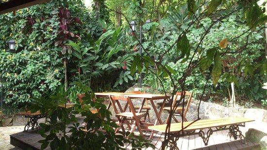Aratinga Inn: Jardincito