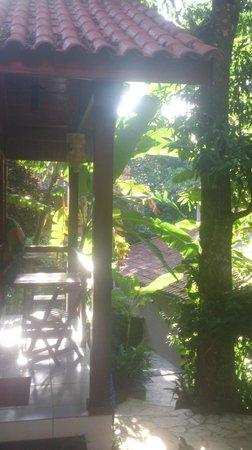 Aratinga Inn : Desde el chalet del fondo