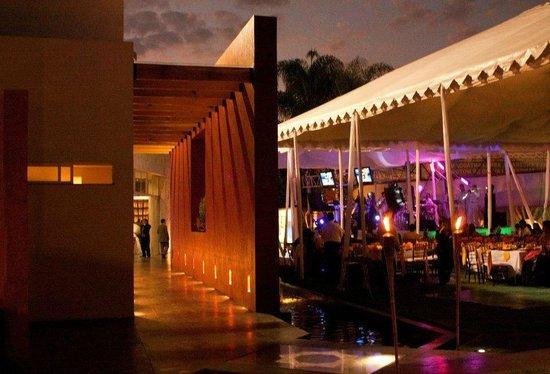 Arborea Hotel: Andador principal de la terraza jardin cedros