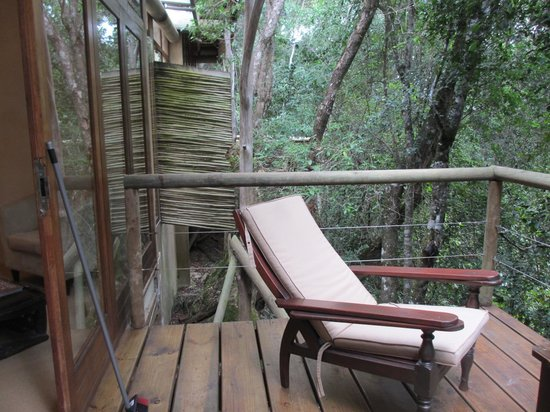 Trogon House and Forest Spa: View of our deck