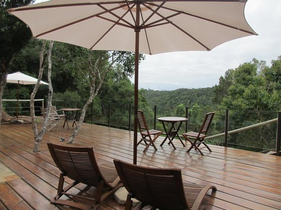 Trogon House and Forest Spa: Pool deck view