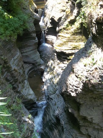 Watkins Glen State Park: Rock carved out by water