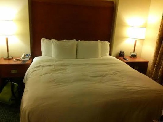 Hilton Atlanta Perimeter Suites: King Bed