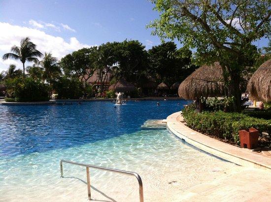 Iberostar Tucan Hotel: Pool