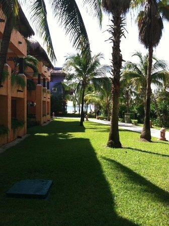 Iberostar Tucan Hotel: Grounds