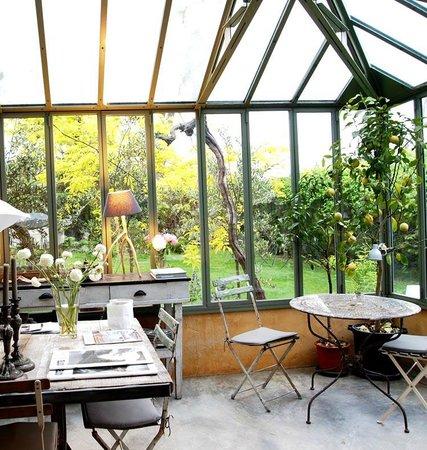Les Hamaques : interior invernadero