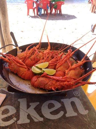 Restaurante Toca Do Lobo: Lagosta, sensacional