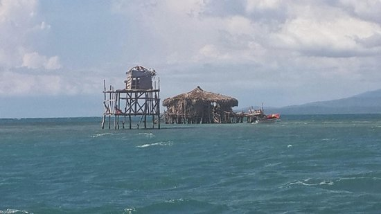 Pelican Bar : Bar out in the Ocean!