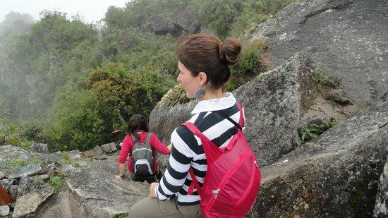 Huayna Picchu : Wayna Picchu