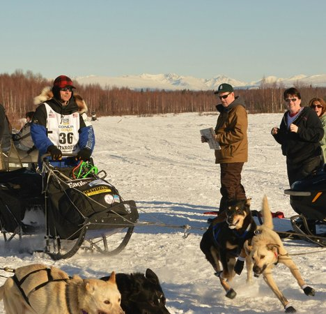 907 Tours: Anchorage - Day Tours: Martin Buser passing another musher at our viewing area!