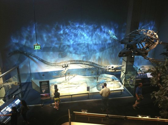 Perot Museum of Nature and Science: dinosaur