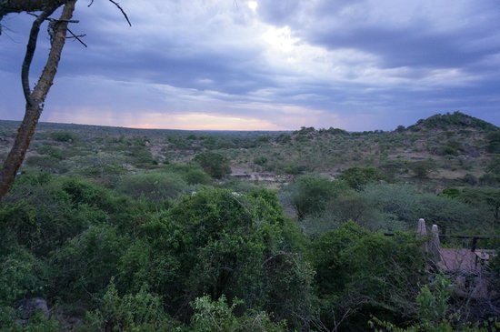 Serengeti Migration Camp: Sunset from rooftop of main buildling