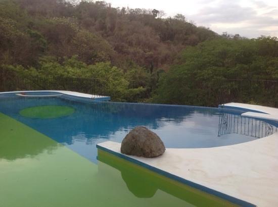 Jungles Edge: Infinity pool at main house