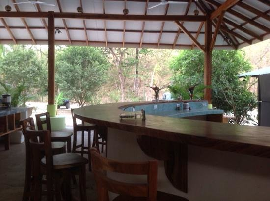 Jungles Edge: Bar area