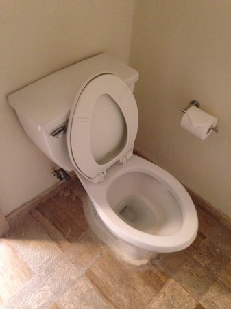 Presidente Inter-Continental Cozumel Resort & Spa: Toilet seat