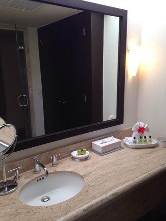 Presidente Inter-Continental Cozumel Resort & Spa: Sink