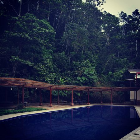 Itamandi EcoLodge : Gorgeous pool
