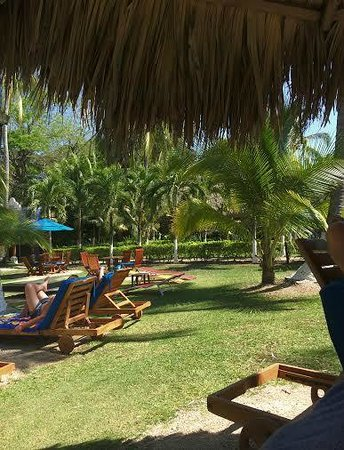 Bahia del Sol Beach Front Boutique Hotel: Beautiful grounds