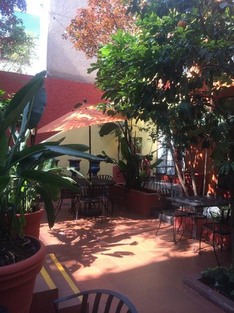 The Red Tree House : courtyard where we enjoyed breakfast and drinks