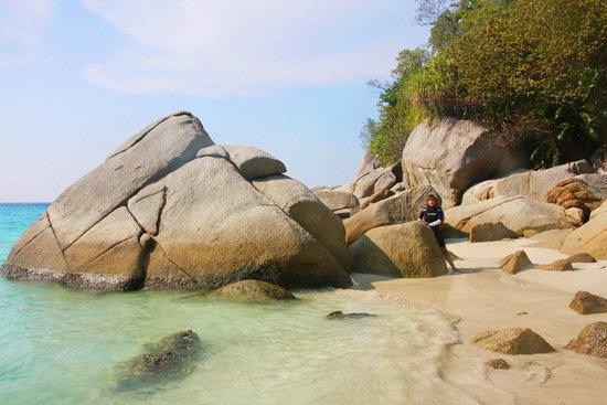 Turtle Sanctuary Beach : Rocks on Turtle beach