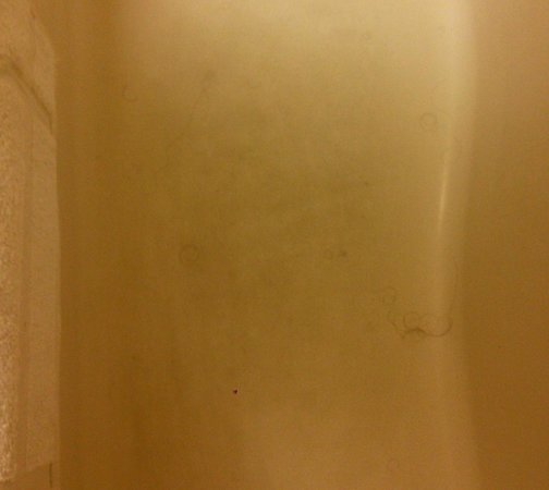 Microtel Inn & Suites by Wyndham Union City/Atlanta Airport: The tub was even worse! Dark black hairs everywhere!