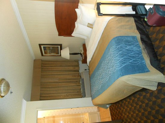 Comfort Inn & Suites LAX Airport: Bedroom with headboard