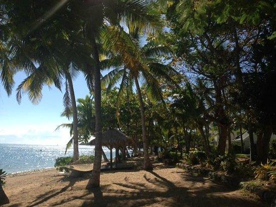 Malolo Island Resort: View near Bures