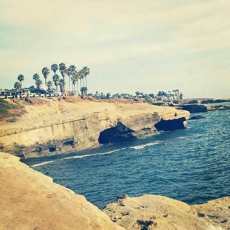 Sunset Cliffs Natural Park: LOVE THIS PLACE ♡