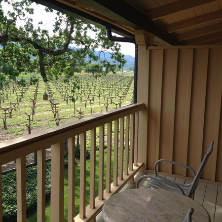 Napa Valley Lodge: Balcony facing vine yard