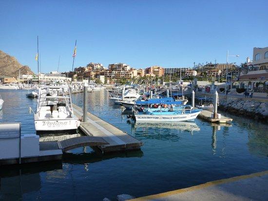 Marina Cabo San Lucas: Cabo San Lucas Marina
