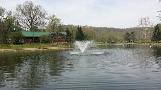 Image result for coonskin park