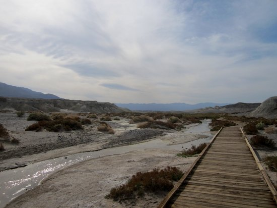 Salt Creek Interpretive Trail : Inviting Boardwalk