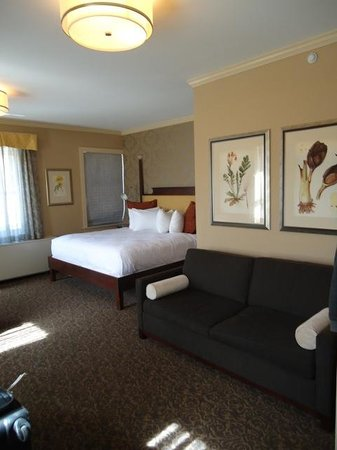 Chestnut Hill Hotel : Fair sized room w/ pull out sofa bed