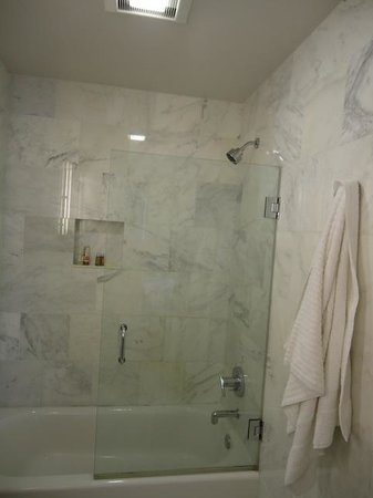 Chestnut Hill Hotel: Glass door to shower