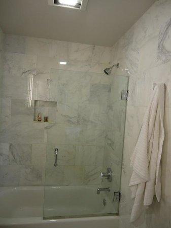 Chestnut Hill Hotel : Glass door to shower