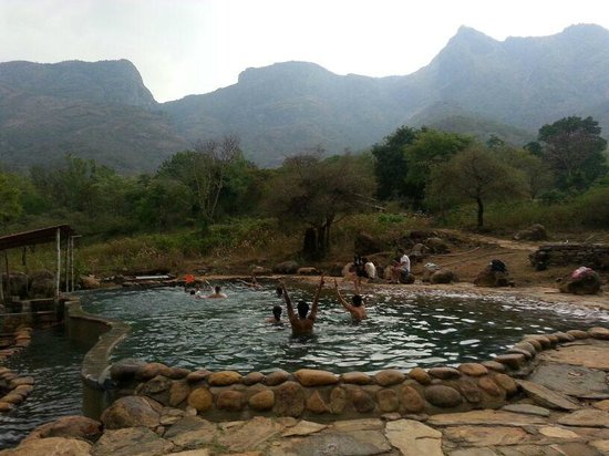Jungle Retreat : The Gang having a blast at the scenic pool
