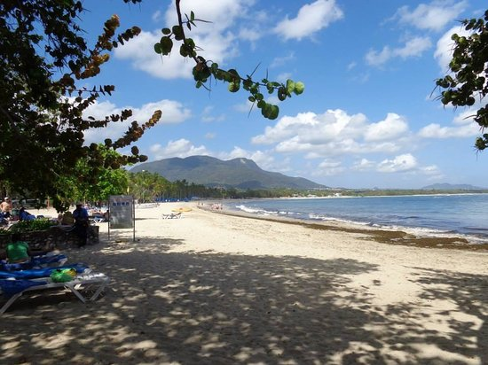 Grand Paradise Playa Dorada : Amazing beach!