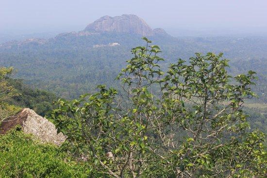 Tranquil Resort: Lookout Rock
