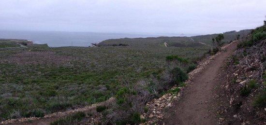 Valencia Peak Trail: nicely groomed areas